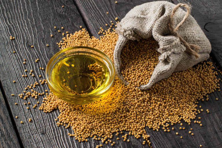 Senfkörner und Senföl mit Jutebeutel