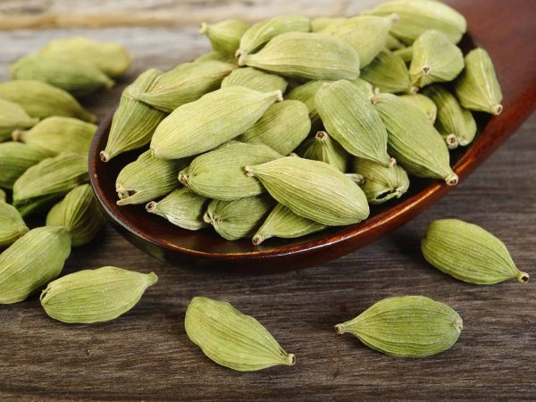 51066780 – green cardamom pods  in wooden spoon