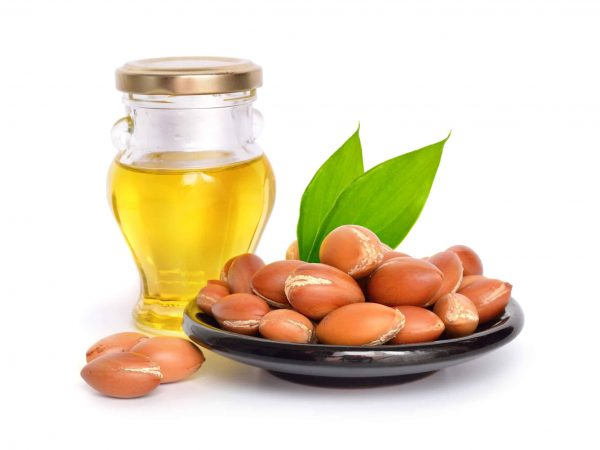 71832937 – argan seed with oil. isolated.