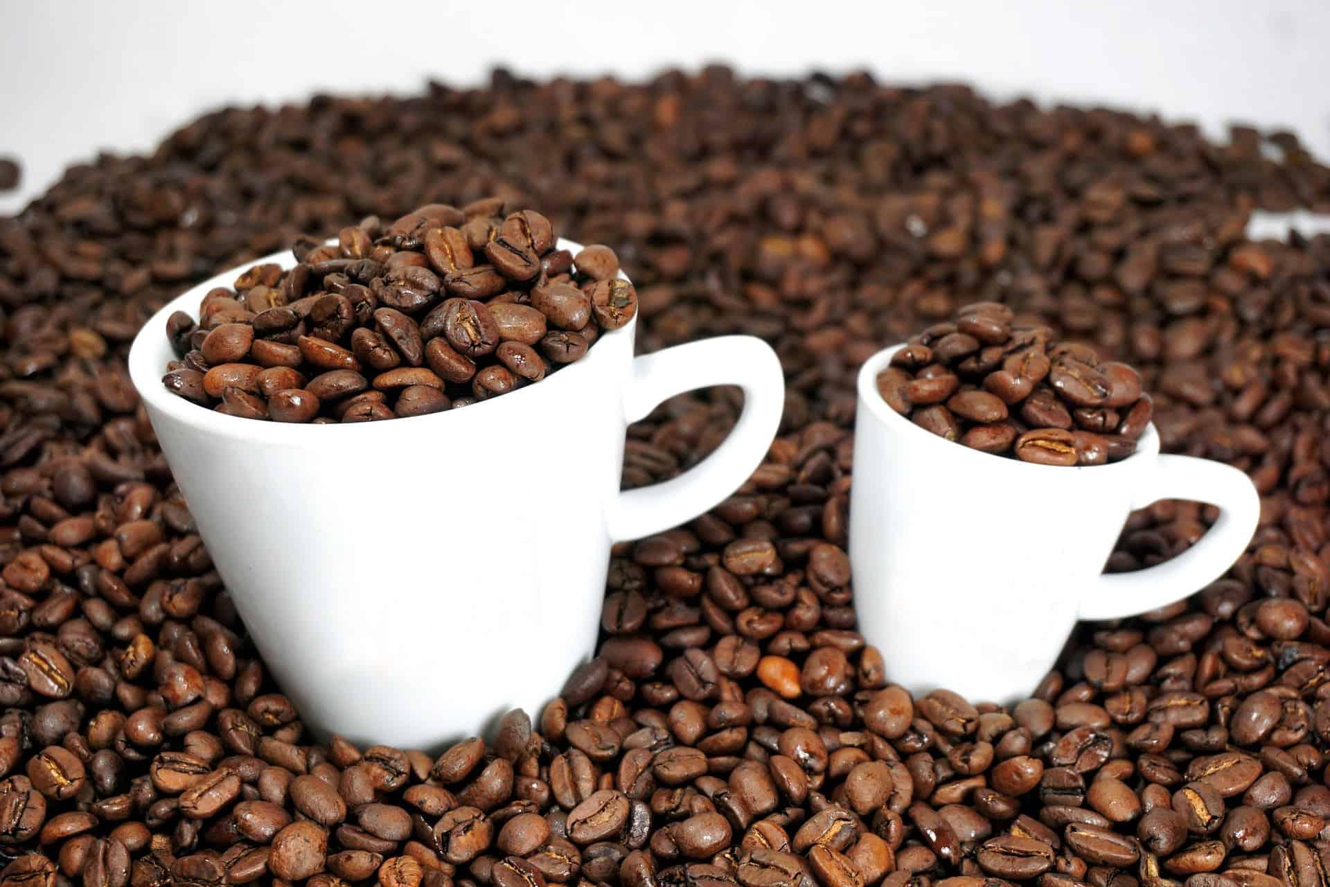 Espresso Bohnen Test 2019 Die Besten Espressobohnen Im Vergleich