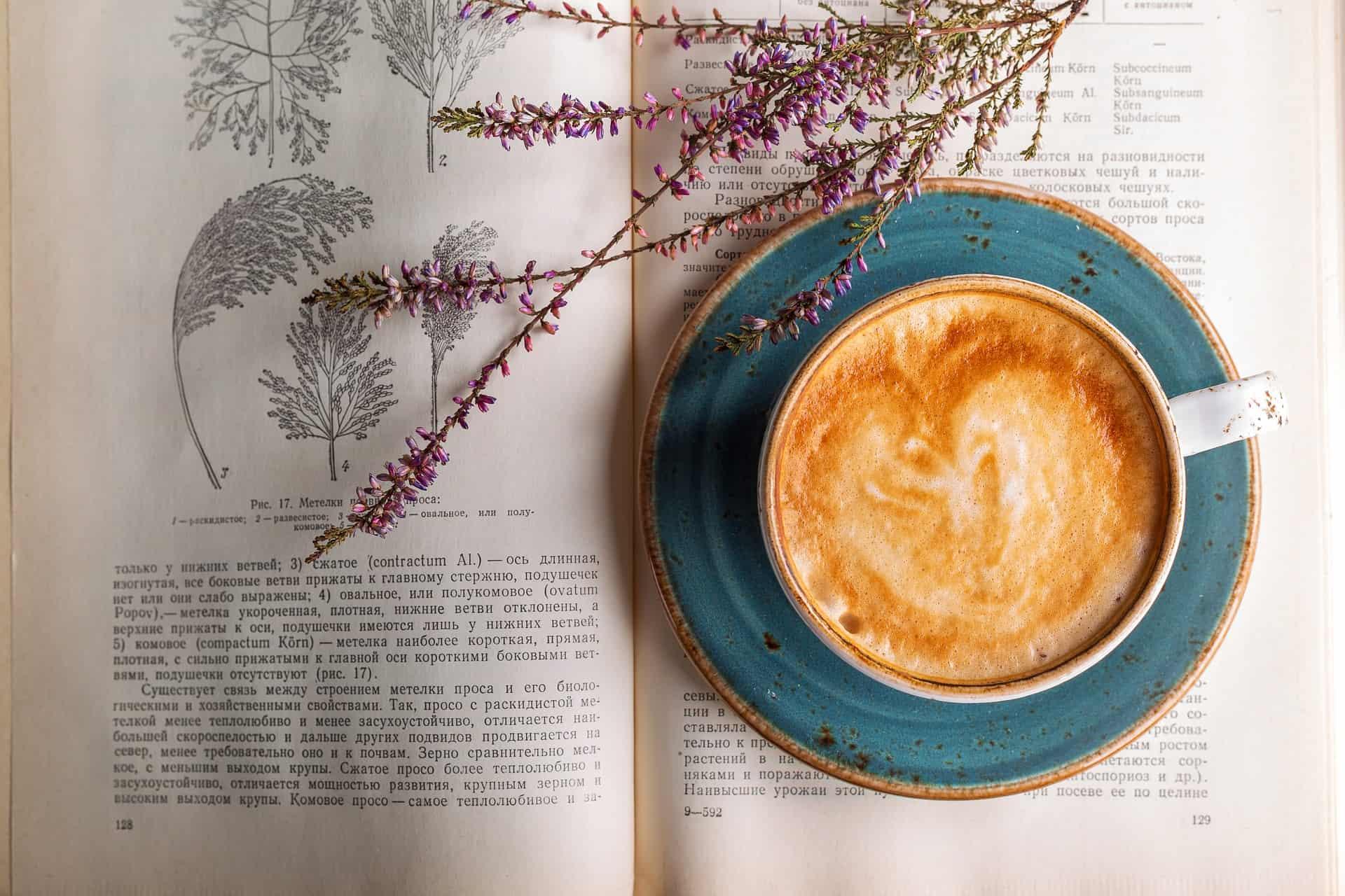 Ist Kaffee ungesund? – 10 Behauptungen und was wirklich dahinter steckt