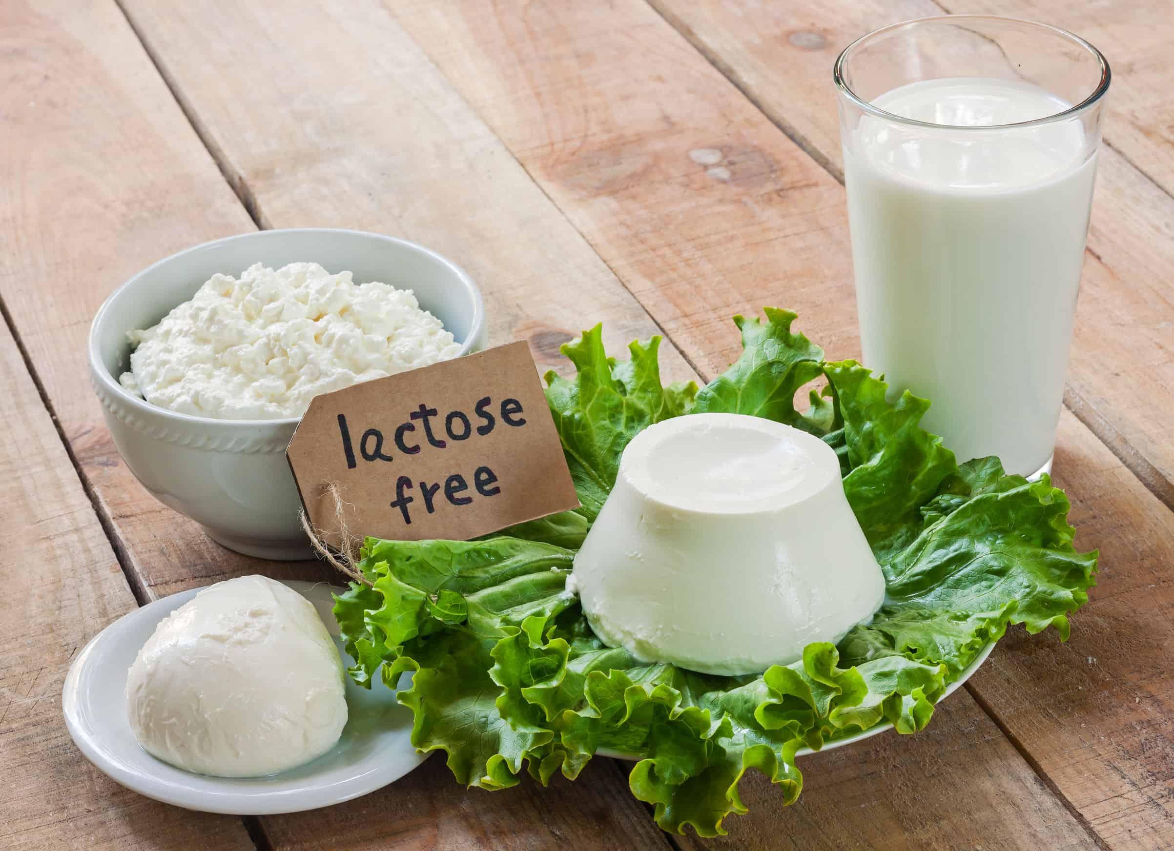 Laktosefreier Käse: Test & Empfehlungen (05/21)
