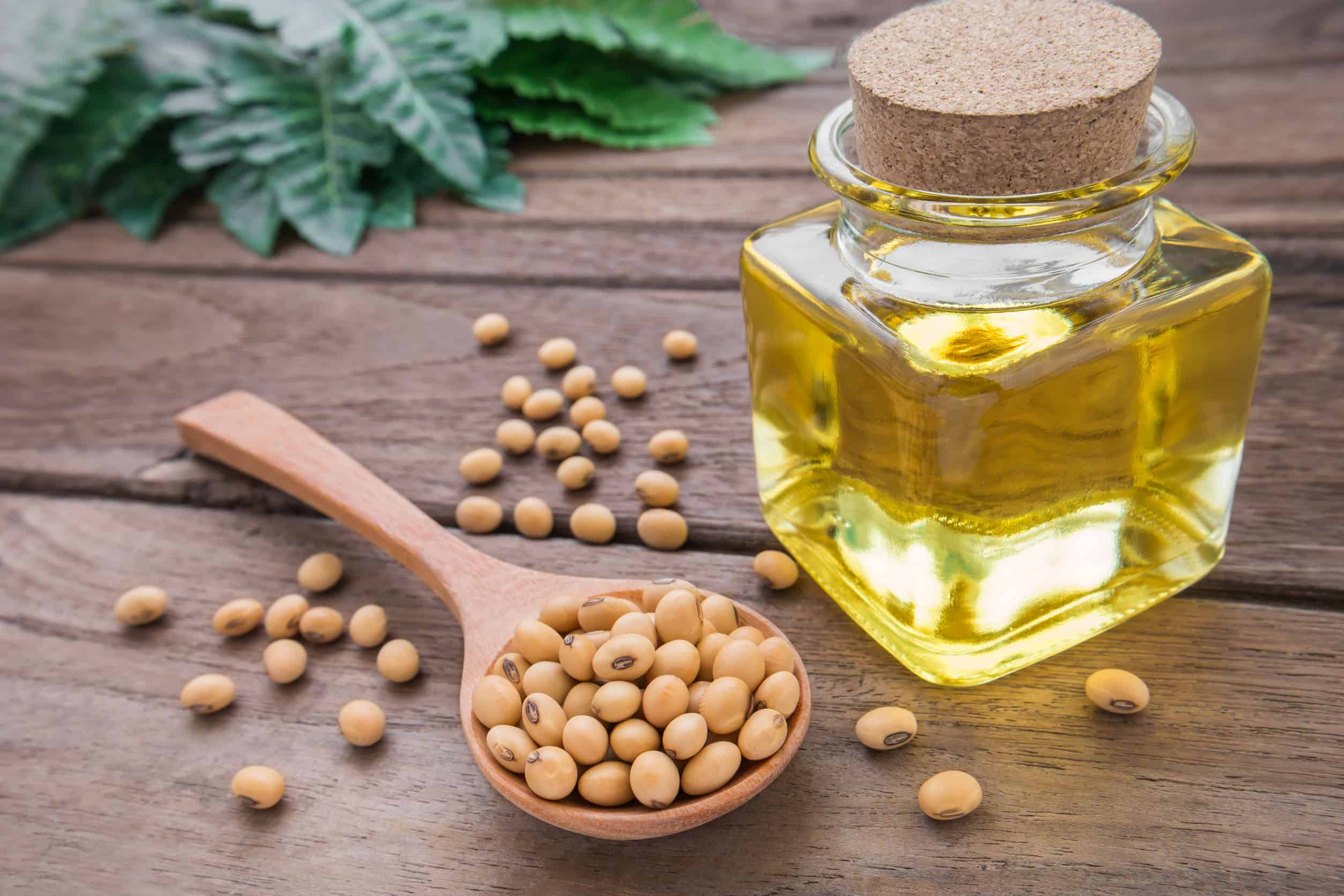 Maior procura e oferta limitada deixam óleo de soja mais caro - Portal  Macaúba