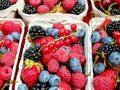 Fruchtpulver: Test & Empfehlungen (04/21)