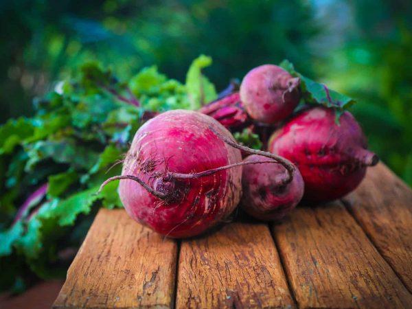 Rote Beete Pulver: Test & Empfehlungen (01/20)