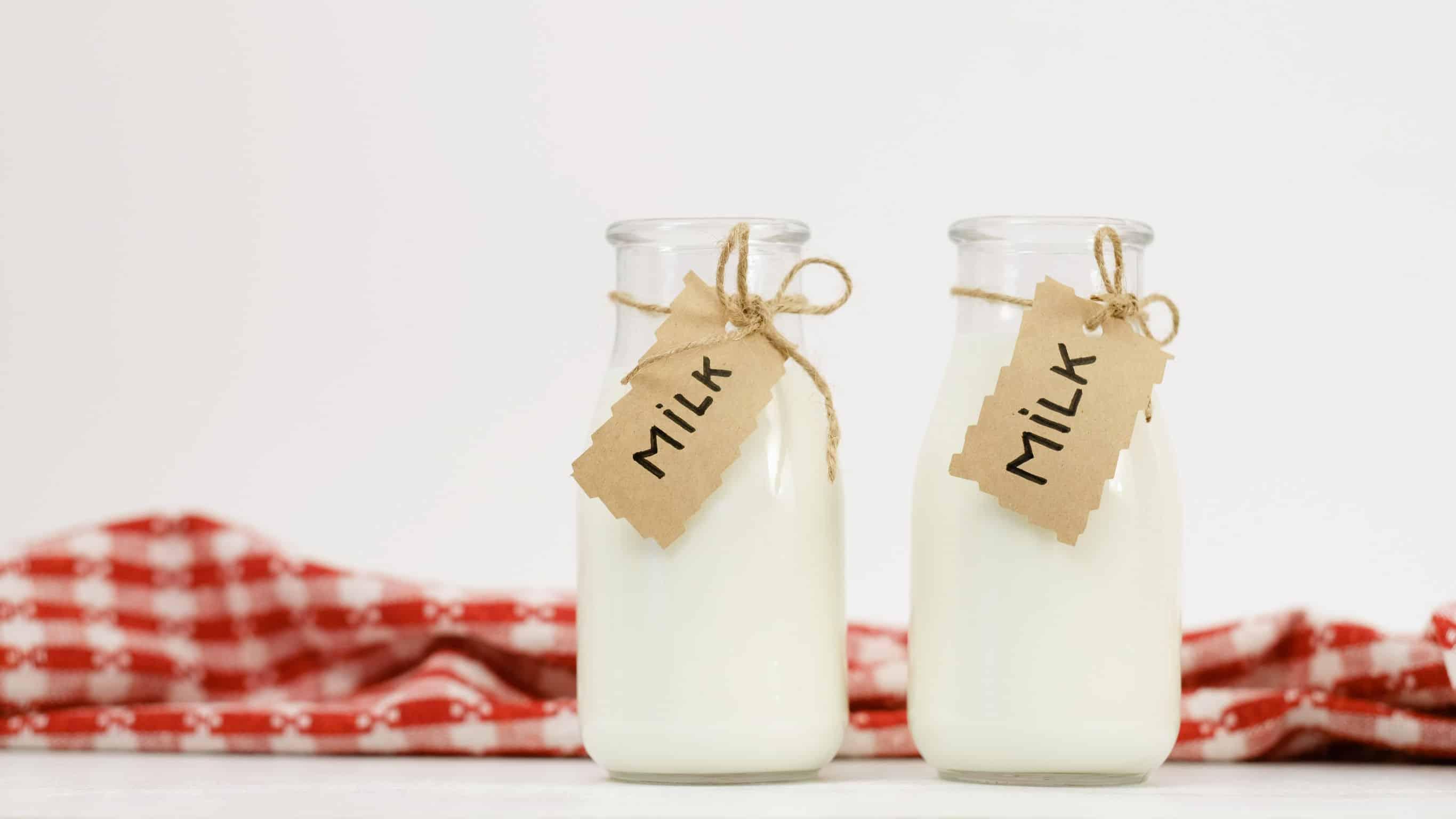 Laktosefreie Milch Test 2020: Die beste Milch im Vergleich