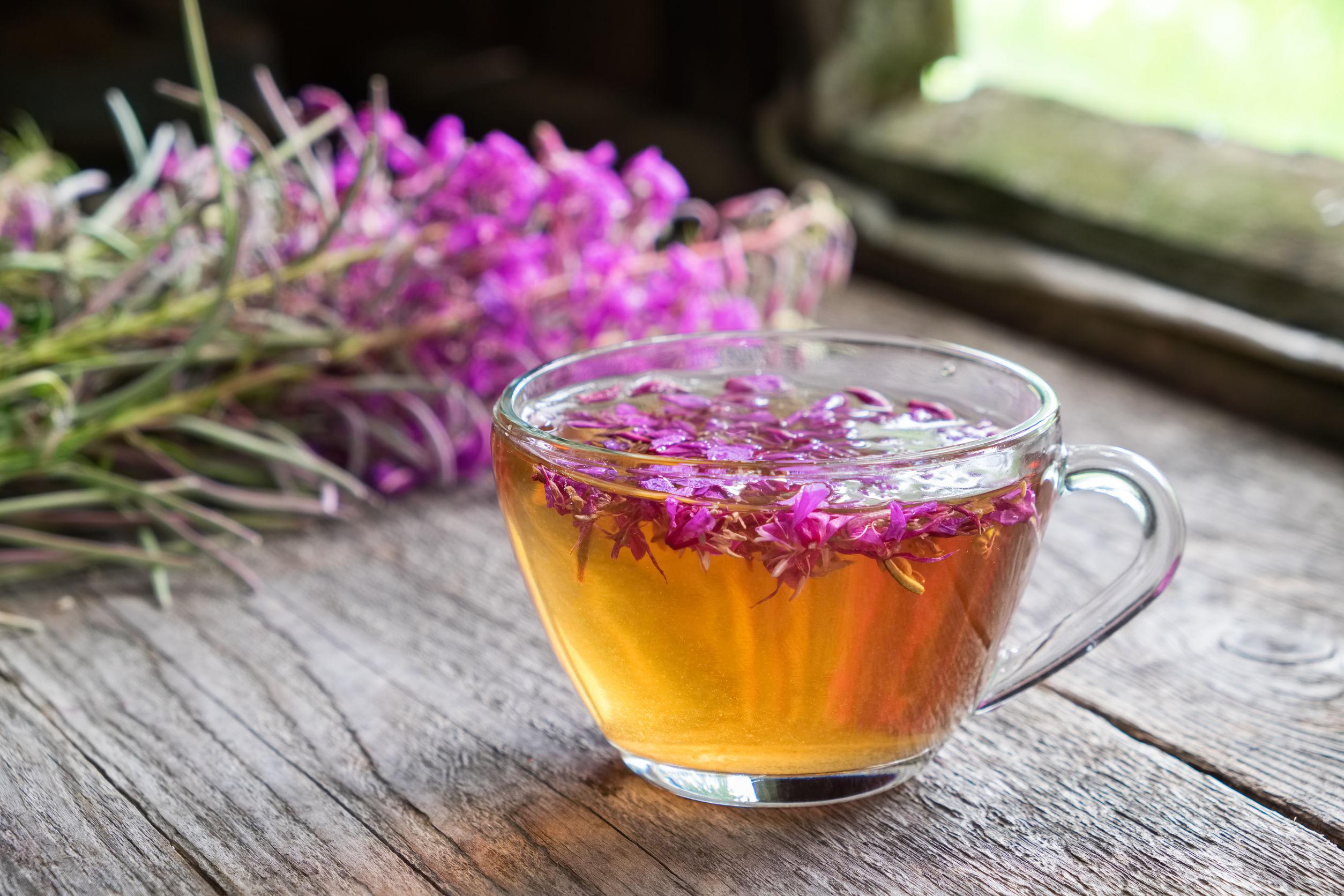 Weidenröschen Tee: Test & Empfehlungen (01/20)